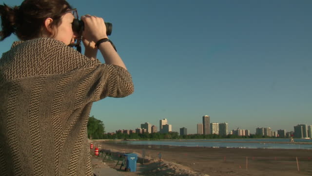 "chicago, il, u.s. - woman watching piping plovers on chicago's montrose beach. conservationists want the ""mamby on the beach"" two-day concert fest... - osservare gli uccelli video stock e b–roll"