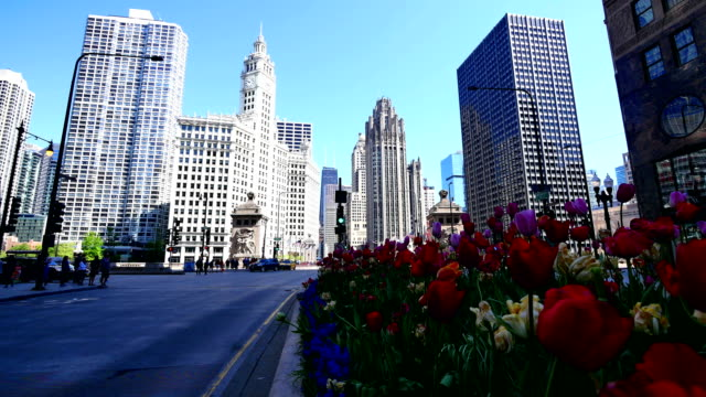 chicago, il - michigan avenue chicago stock videos & royalty-free footage