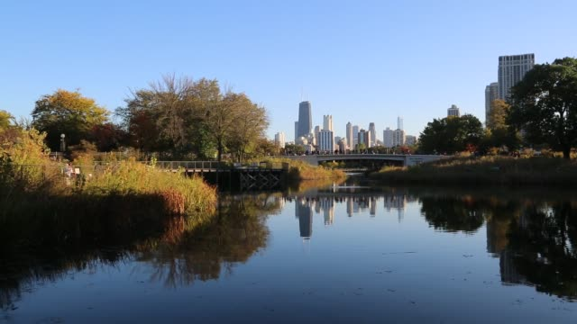 Chicago Skyline from Lincoln Park Zoo in fall