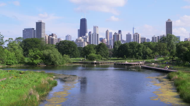 ws chicago skyline with park and pond - footbridge stock videos & royalty-free footage