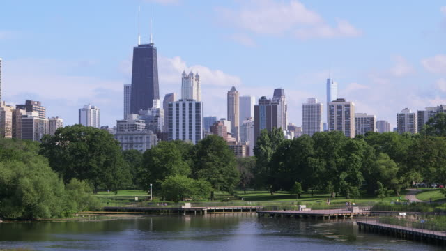 ws chicago skyline with park and pond - willis tower stock videos and b-roll footage