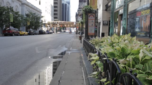 chicago street traffic passes urban garden - median nerve stock videos & royalty-free footage