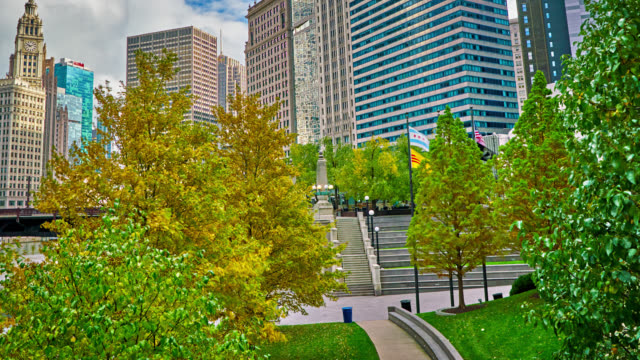 chicago. tree. autumn. business district skyline - landscaped stock videos & royalty-free footage