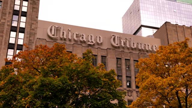 chicago tribune. building. tree. - トリビューンタワー点の映像素材/bロール