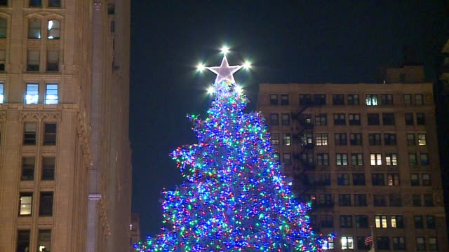 wgn chicago's christmas tree with lights at night in millenium park on november 24 2015 - クリスマスツリー点灯式点の映像素材/bロール