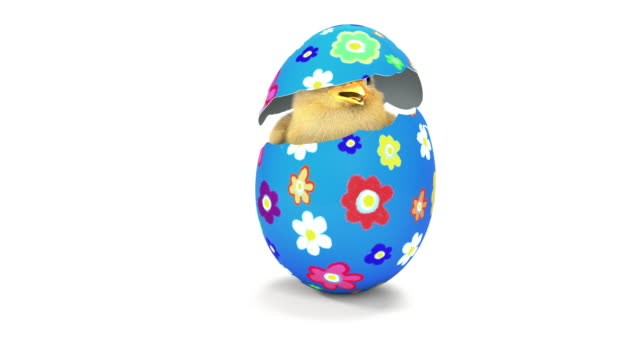 chick hatching from an easter egg - easter stock videos & royalty-free footage