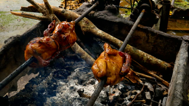 Chicken Grill with Rolling Bar in Nature