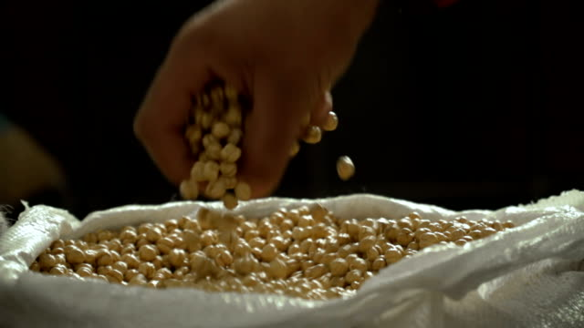 chickpeas in sack - sack stock videos & royalty-free footage