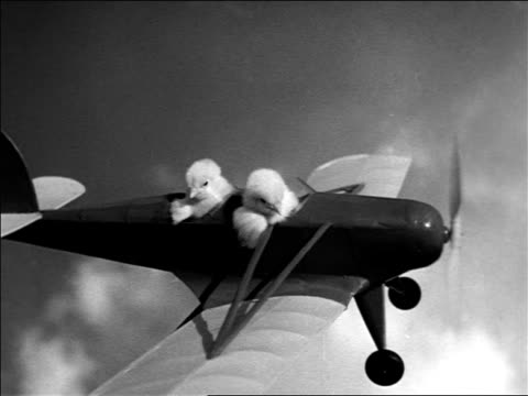 B/W 1938 2 chicks sitting in toy airplane