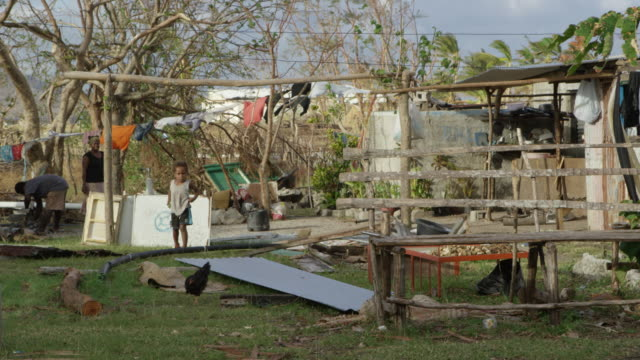 vanuatu - march 31, 2015: child and chicken wander about next to shacks - rebuilding stock videos & royalty-free footage