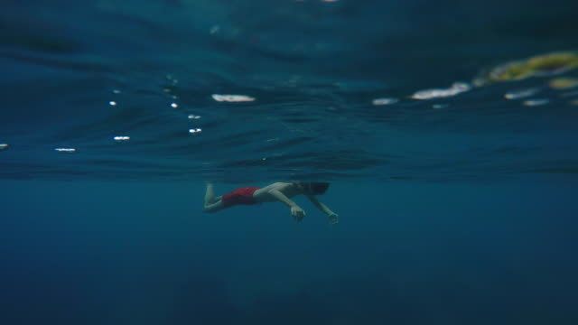 child diving underwater to snorkle, island with mountain over water - tahitian culture stock videos and b-roll footage