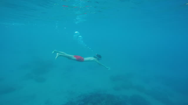 child diving underwater to snorkle, island with mountain over water