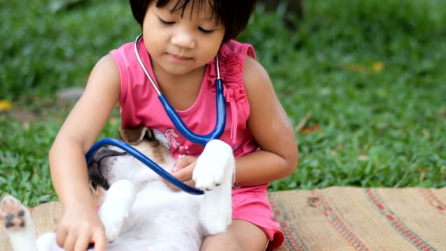 child doctor playing veterinarian with dog - dressing up stock videos & royalty-free footage