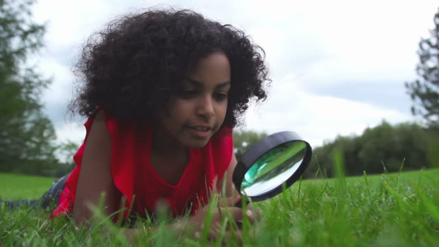 child finds something big - magnifying glass stock videos & royalty-free footage