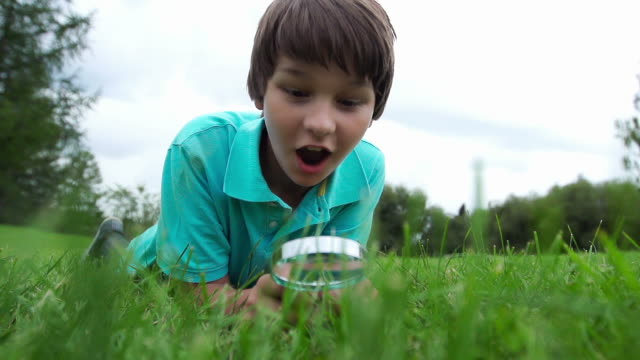 stockvideo's en b-roll-footage met child finds something big - vergrootglas