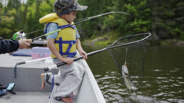 child fishing for bass - fishing industry stock videos & royalty-free footage
