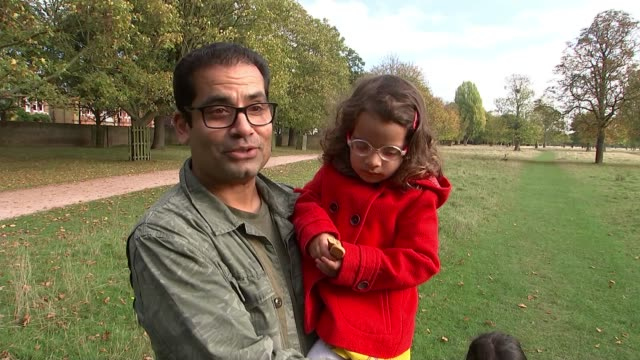 child gored by stag in bushy park bushy park london uk general views stags and interviews with people in park london teddington bushy park ext stag... - deer family stock videos and b-roll footage