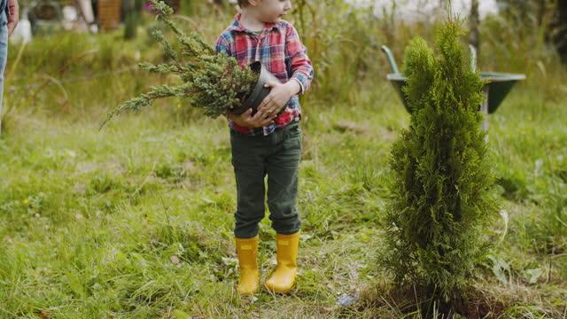 裏庭に木を植えるのを手伝う子供 - 作物点の映像素材/bロール