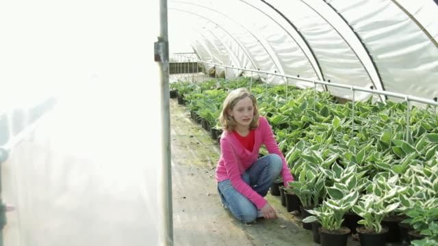 child (11) holding up plant in green house at plant nursery - endast flickor bildbanksvideor och videomaterial från bakom kulisserna