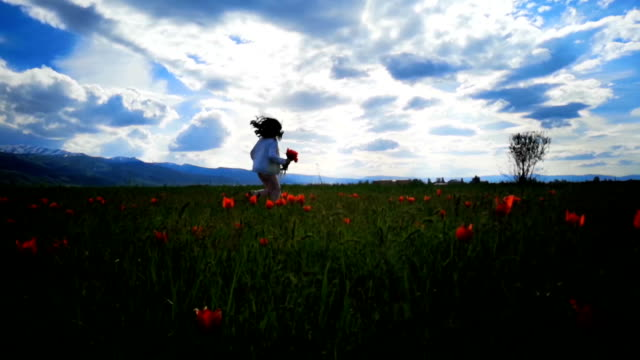 child in tulip flower field. - plant bulb stock videos & royalty-free footage