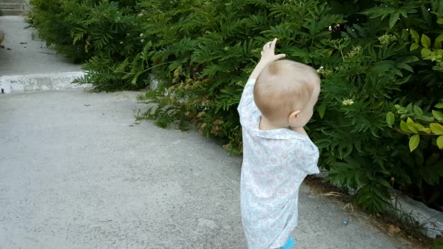 child is walking and playing outdoors - 2 3 years stock videos and b-roll footage