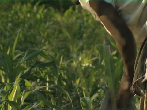 child labour, ugandan girl digging - slavery stock videos & royalty-free footage
