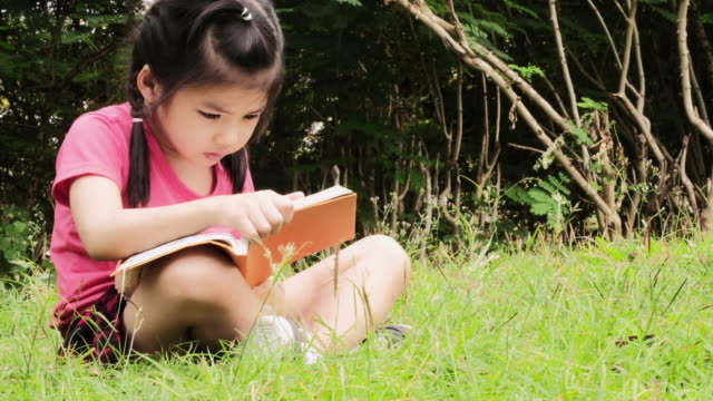 4k child little girl reading a storybook in park preparing for school, close up young student studying, portrait face kid reads playing book on meadow grass in summer flowers outdoor in nature closeup - fairy stock videos & royalty-free footage