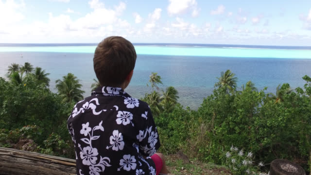 child looks at tropical vegetation and the sea with his mother - 発見点の映像素材/bロール