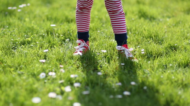 child picking daisies in a back yard - picking stock videos & royalty-free footage