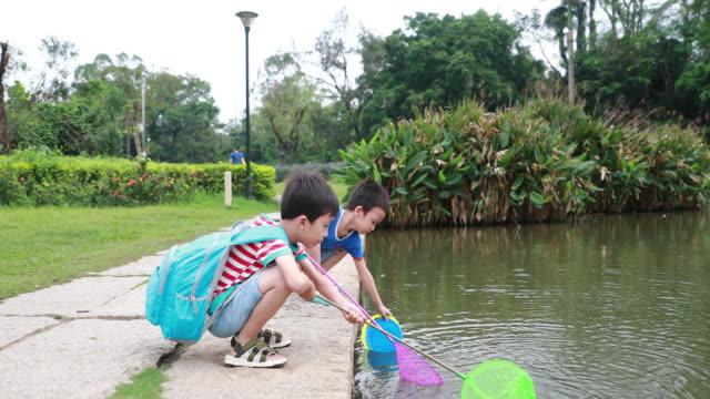 vídeos de stock e filmes b-roll de child playing by a stream fishing - peixe fresco
