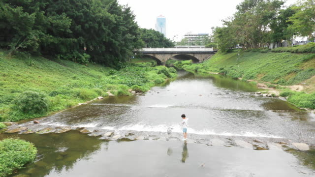 stockvideo's en b-roll-footage met kind spelen door een stream te vissen - alleen jongens