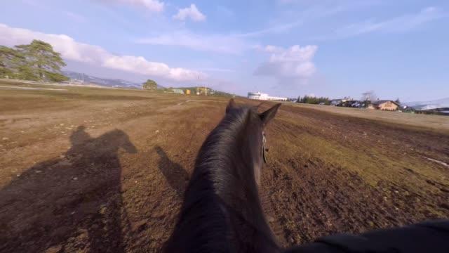 子供の乗馬馬。家畜 - 乗る点の映像素材/bロール