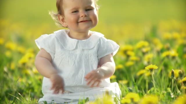 hd: child sitting in the grass - one baby girl only stock videos & royalty-free footage