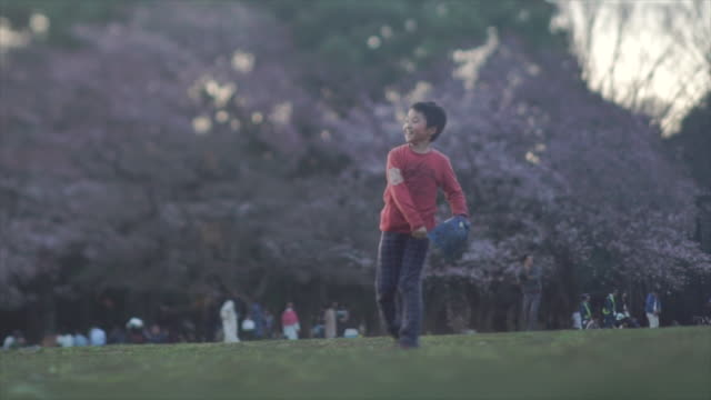 child throws baseball in yoyogi park - tokyo, japan - baseball sport stock videos and b-roll footage