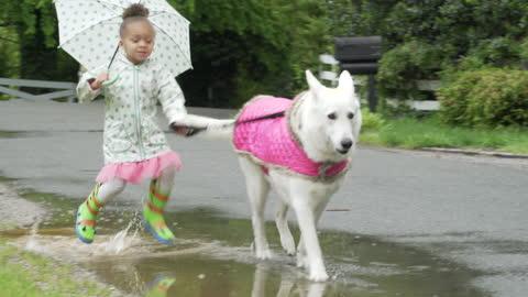 vídeos de stock, filmes e b-roll de criança andando na chuva com cachorro - molhado