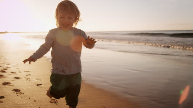 child walking on beach - track imprint stock videos and b-roll footage
