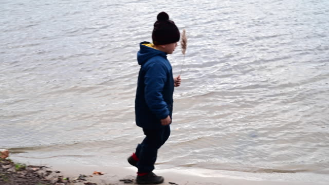 child walking on the edge of the water of a lake in winter with a twig in his hand. he is looking for something.  germany. brandenburg - twig stock videos & royalty-free footage