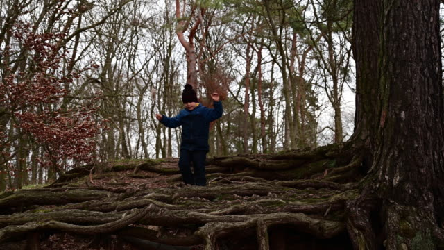child walking under a large pine tree with long roots that cover the ground. winter time. germany. - ウィンターコート点の映像素材/bロール