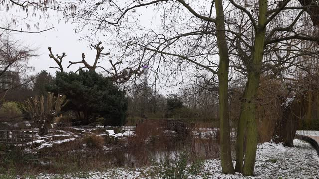 children and families enjoy the japanese garden during winter snow in regents park on february 9, 2021 in london, england. heavy snow brings a week... - standing water stock videos & royalty-free footage
