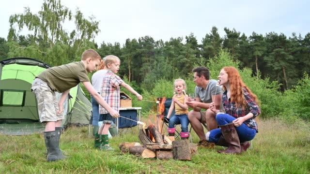 vídeos de stock e filmes b-roll de children and father roasting marshmallows over campfire - família com quatro filhos
