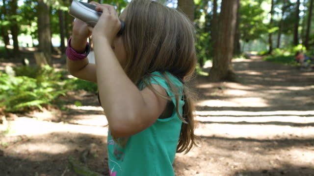 children bird watching in forest - osservare gli uccelli video stock e b–roll