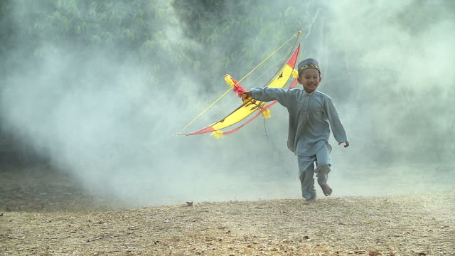 Children Boy Playing with his Kite Enjoyment Concept.