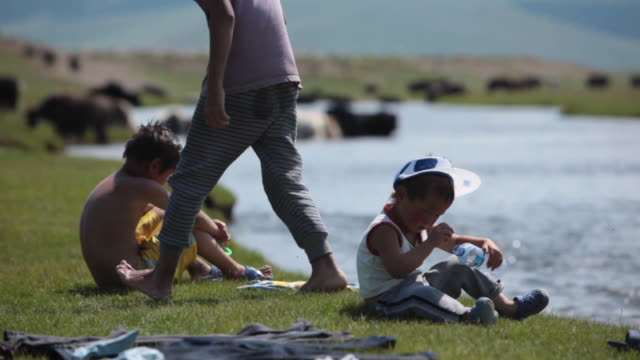 stockvideo's en b-roll-footage met children by the river with animals on the background - middelgrote groep dieren