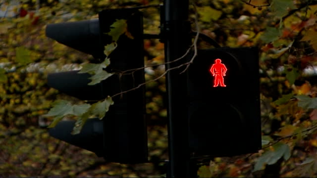 children campaign on road safety issues pedestrian crossing traffic lights as show red man traffic along over 20 mile per hour road markings - マイル点の映像素材/bロール