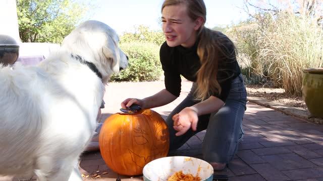 vidéos et rushes de children carving pumpkins on brick patio - 6 11 mois