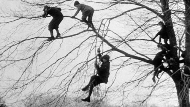 Children climb ladder into tree and to outer tree limbs then drop to ground