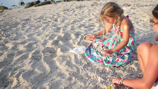 children collecting sea shells - picking up stock videos & royalty-free footage