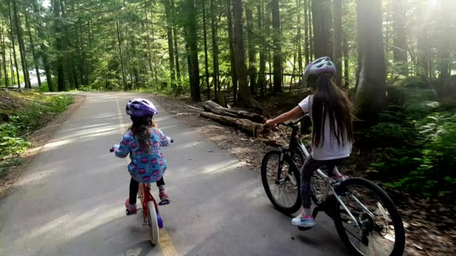 children cycling through a lush green forest - footpath stock videos & royalty-free footage