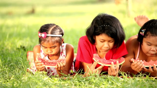 children eating watermelon - picnic stock videos and b-roll footage