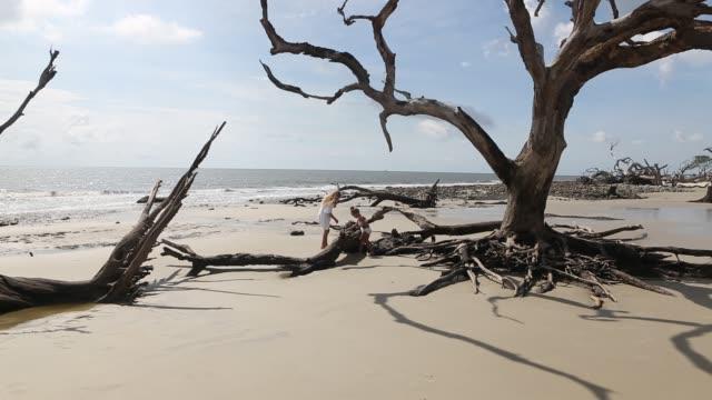 children exploring driftwood beach